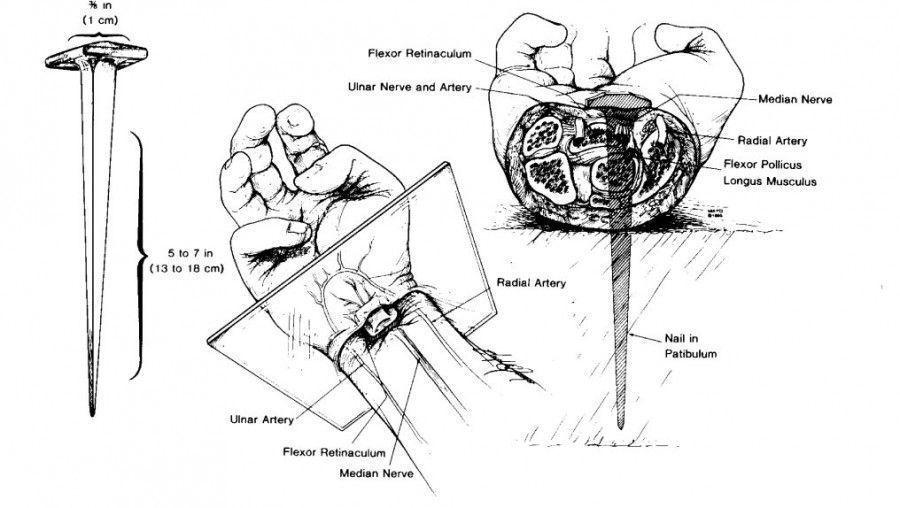 ¿Cómo clavaron las manos de Jesús a la cruz?