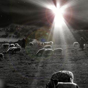 Pastores al raso