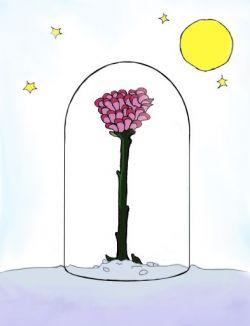 La flor de le petit prince